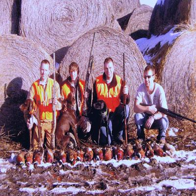South Dakota Hunt  - German Shorthaired Pointer Hunting Dog Pictures
