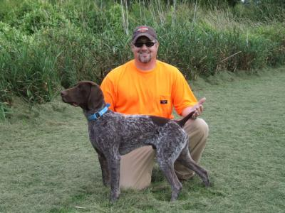 NAVHDA NATURAL ABILITY PRIZE I - German Shorthaired Pointer Hunting Dog Pictures