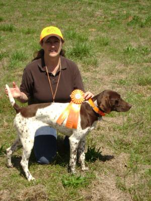 NEW AKC SENIOR HUNT TITLE - German Shorthaired Pointer Hunting Dog Pictures
