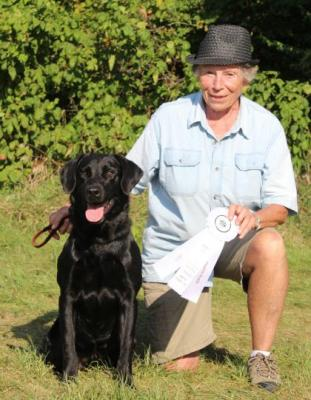 First Field Trial Placement! - Labrador Retriever Hunting Dog Pictures