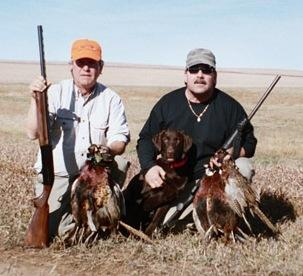Josie impresses everyone - Labrador Retriever Hunting Dog Pictures