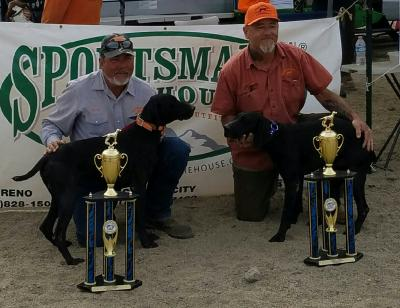 Blue right, Coal left, Blue is hazels father and Coal is Hazels brother, they got first place in double in a US birddog competition.