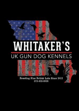 Whitaker's UK Gun Dog Kennels