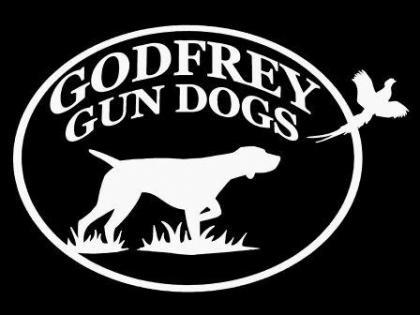 Godfrey Gun Dogs
