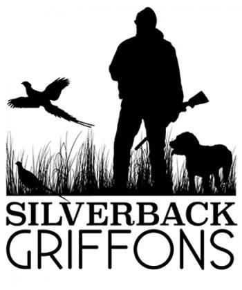 Silverback Griffons