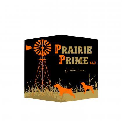 Prairie Prime Epagneul Bretons