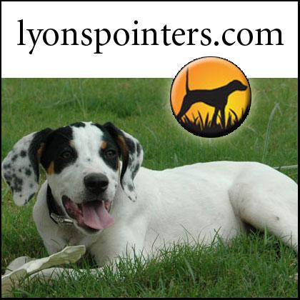 Lyons Pointers
