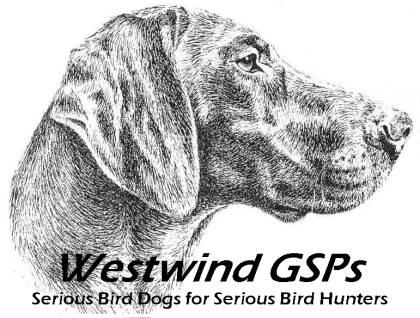 Westwind GSPs