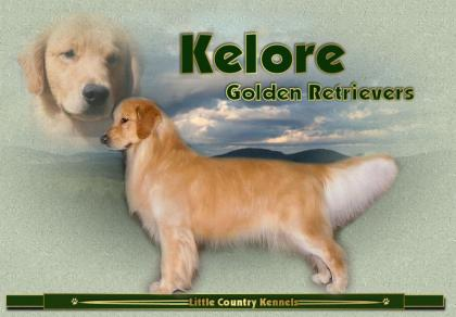 Kelore Kennels