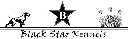 Black Star Kennels