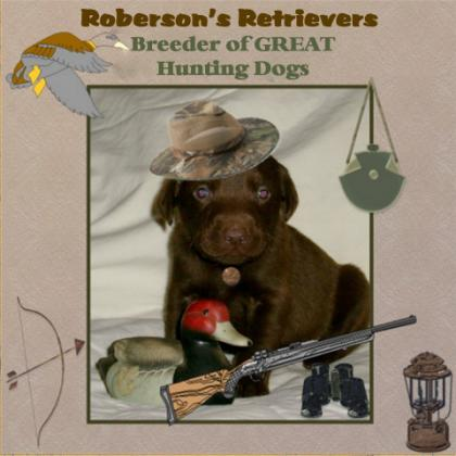 Robersons Retrievers