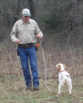 M & W Gun Dog Training