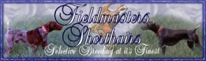 Fieldmaster's Shorthairs