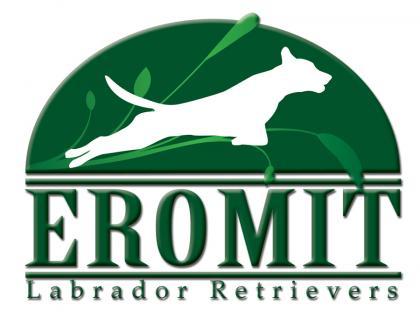 Eromit Labrador Retrievers