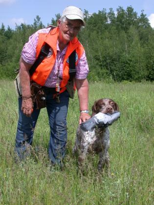 CHAMBOIS - Braque Francais English Setter