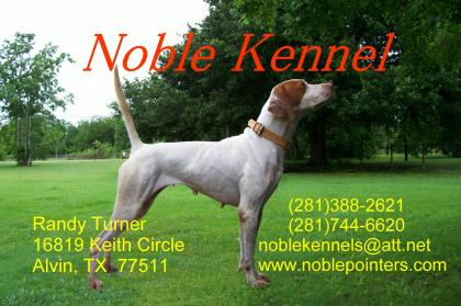 Noble-Kennels