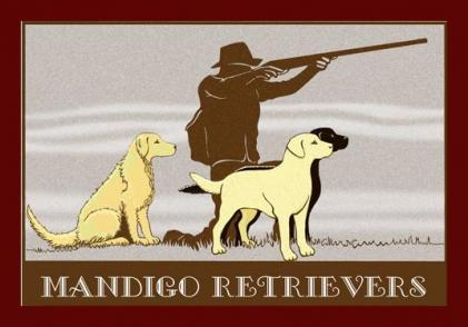 Mandigo Retrievers