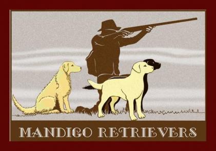 Mandigo Retrievers