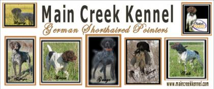 Main Creek Kennel