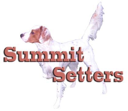 Summit Setters