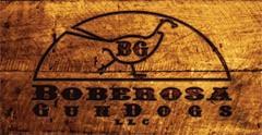 Boberosa Gundogs