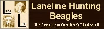 Laneline Hunting Beagles
