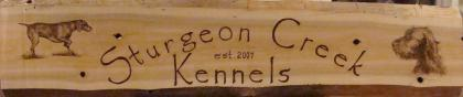 Sturgeon Creek Kennel