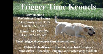Trigger Time Kennels