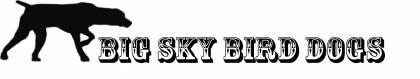 Big Sky Bird Dogs