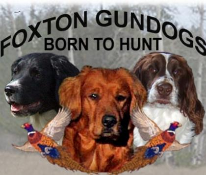 Foxton Gundogs