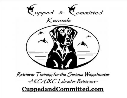 Cupped and Committed Kennels