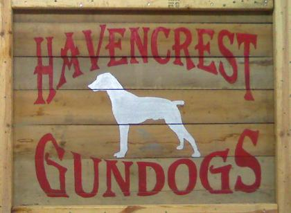 HavenCrest GunDogs
