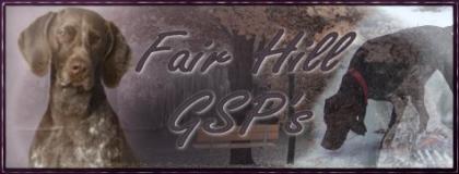 FairHill GSP's