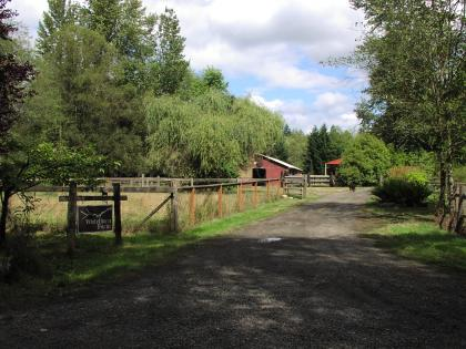 Whitethorn Farm and Kennel