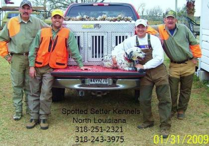 Spotted Setter Kennels