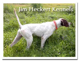 Jim Heckert Kennels
