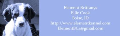 Element Brittanys