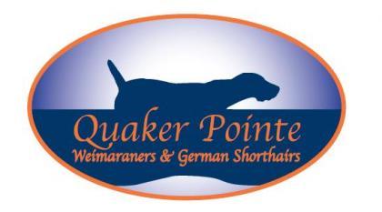 Quaker Pointe Weim's & GSP's