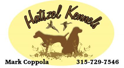Hatszel Kennels