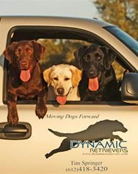Dynamic Retrievers