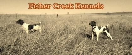 Fisher Creek Kennels