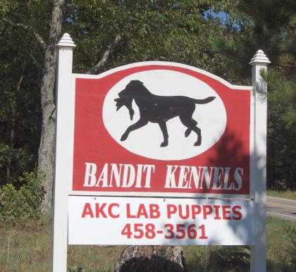 Bandit Retrievers