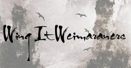 Wing It Weimaraners