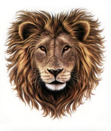 Lion Heart  Inn & Kennels