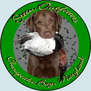 Steen Outfitters and Kennels