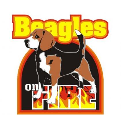 BEAGLES ON FIRE
