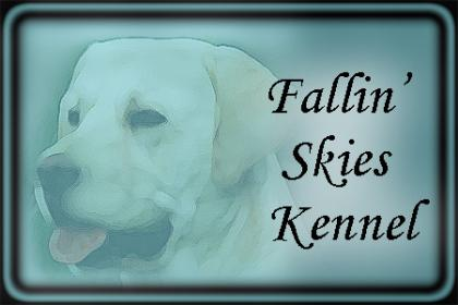 Fallin Skies Kennel