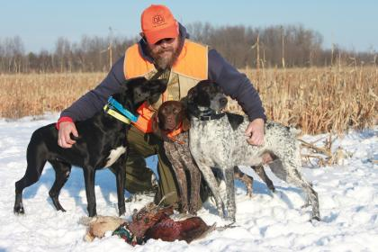 PINE VALLEY GUNDOGS