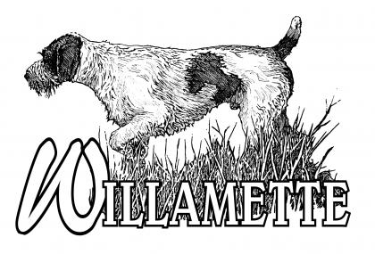 Willamette German Wirehaired Pointers