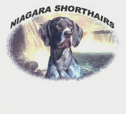 Niagarashorthairs